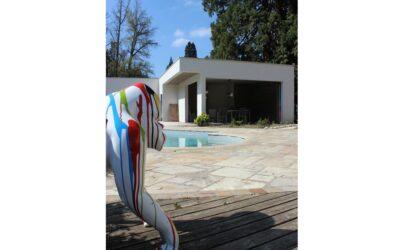 Pool-house P.